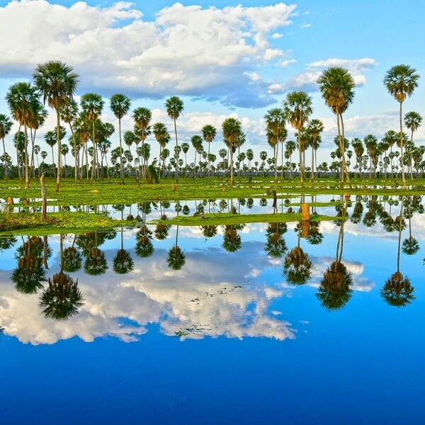 El paraíso natural formoseño es un fuerte candidato a convertirse en maravilla nacional.